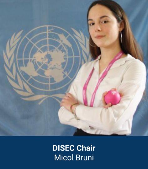 Micol Elizabeth Bruni - DISEC Chair
